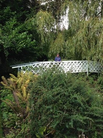 Gooderstone Water Gardens & Nature Trails: Monet bridge