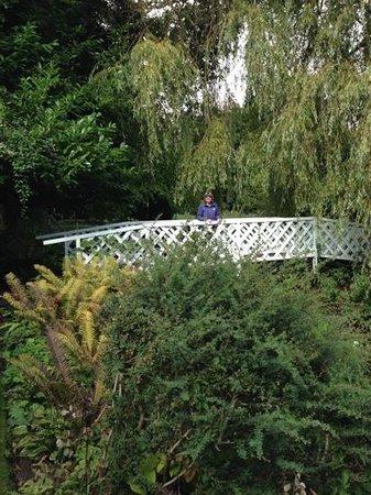 Gooderstone Water Gardens & Nature Trails : Monet bridge