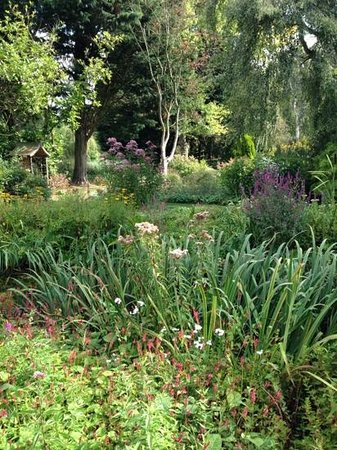Gooderstone Water Gardens & Nature Trails : by the water