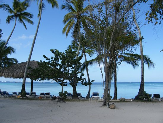 Dreams La Romana : beautiful beach