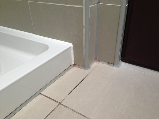 Center Parcs Longleat Forest: bathroom