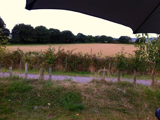 Cofton Holidays: View from tent pitch (Barn Field)