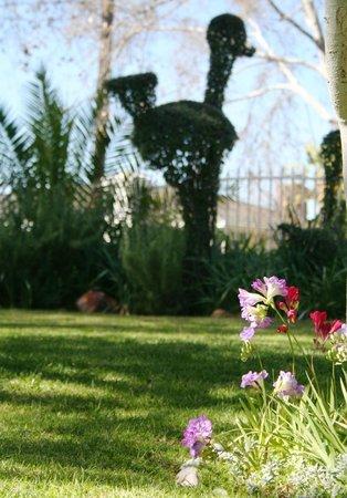 Le Roux's Guest House: Garden