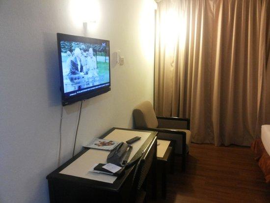 Garden Inn: TV