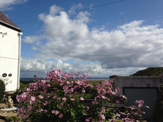 Welsh Welcome: View from the garden