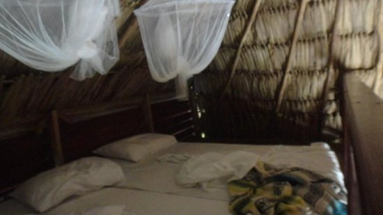 Ak'bol Yoga Retreat & Eco-Resort: Loft bed