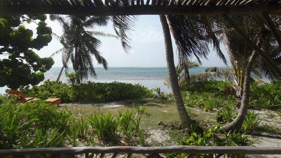 Ak'bol Yoga Retreat & Eco-Resort: View