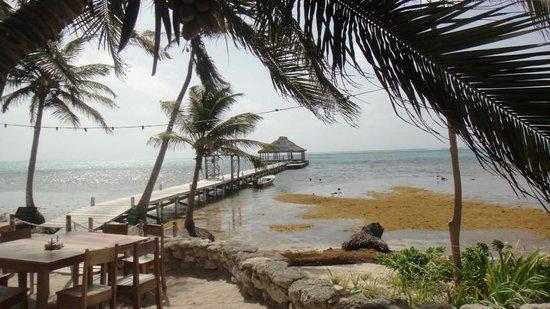 Ak'bol Yoga Retreat & Eco-Resort: Yoga pier