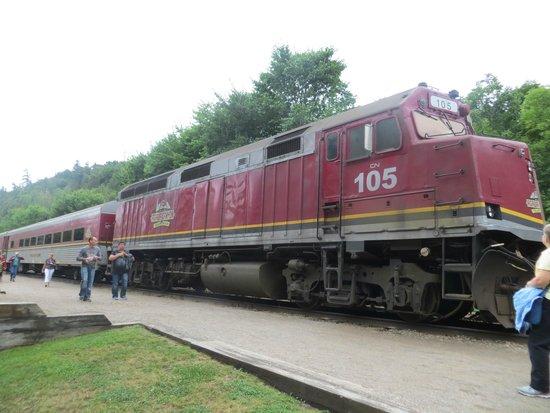 Agawa Canyon Tour Train: Agawa Canyon train