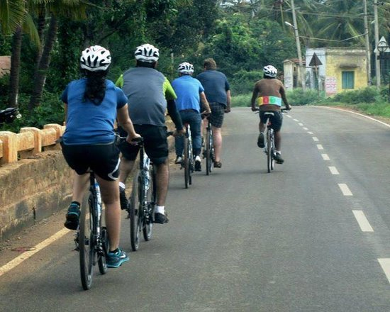 Art of Bicycle Trips : Cycling just outside Bangalore