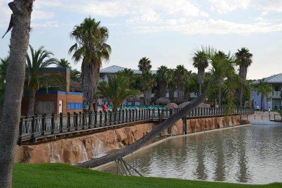 PortAventura Hotel Caribe : Jardines interior hotel