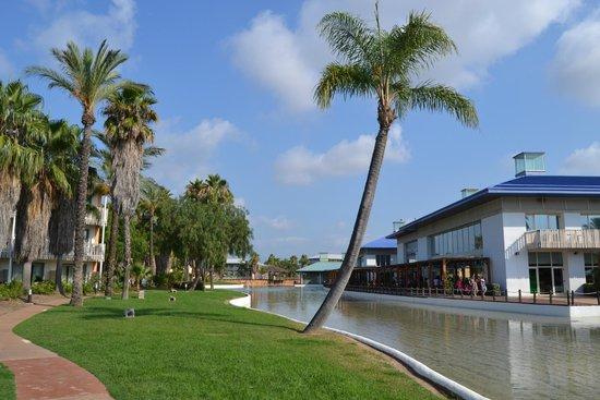 PortAventura Hotel Caribe : Jardines a donde dan las habitaciones