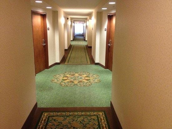 Comfort Suites Gettysburg: Hallway