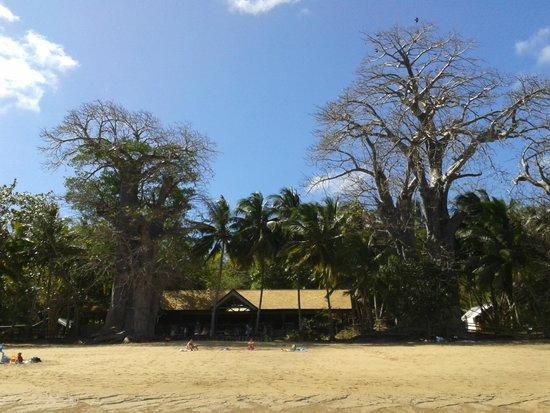 Le Jardin Maore: Le restaurant vu de la plage