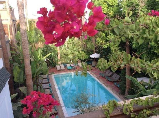 Les Jardins de la Medina: la piscine