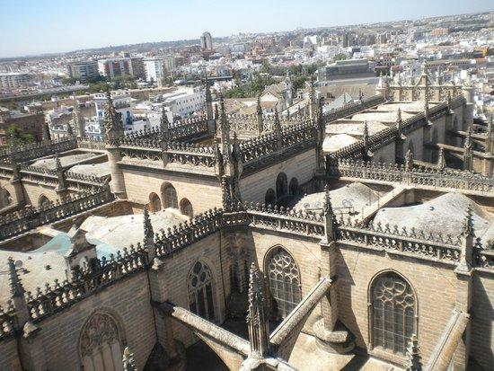 Catedral de Sevilla: 5
