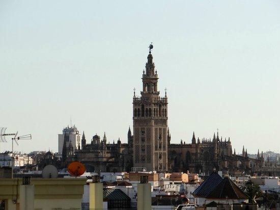Catalonia Santa Justa Hotel: Vista do terraço