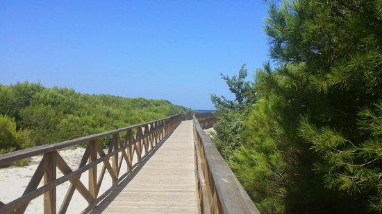 Valentin Playa de Muro: way to the beach 5 minutes walking