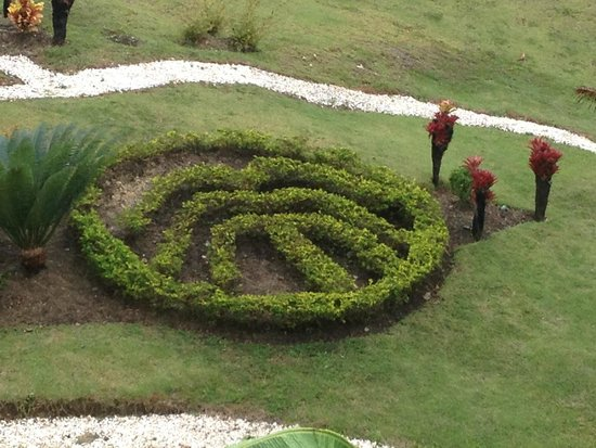 The Tropical at Lifestyle Holidays Vacation Resort: Some Plant Artwork