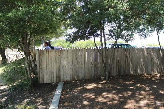 Dealey Plaza National Historic Landmark District: Fence on top of grassy knoll