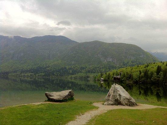 Lake Bohinj: Belo lago