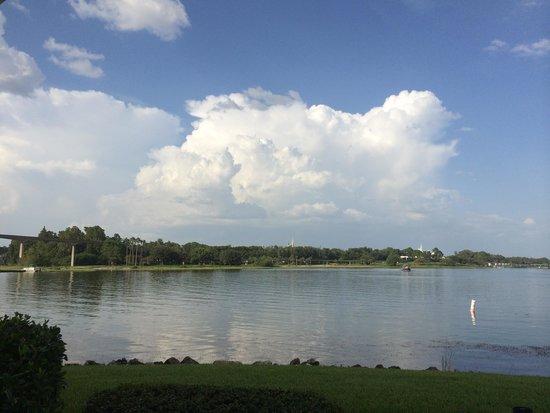 Disney's Grand Floridian Resort & Spa: Sago Key 5145. Castle view!  Private balcony