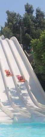WaterPark: racing slide