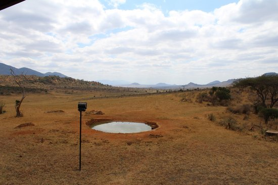 Ngulia Safari Lodge: Waterhole