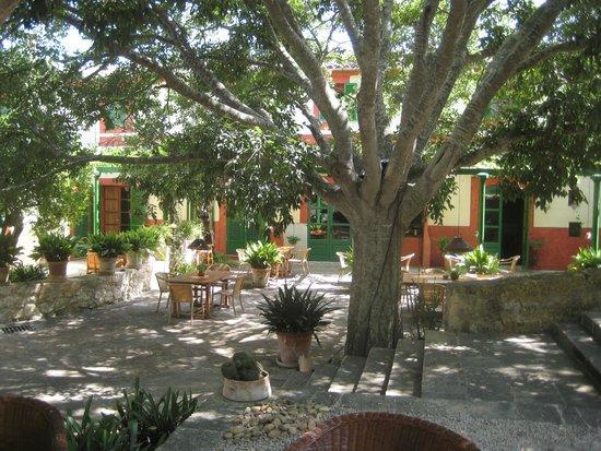 Agroturismo sa Rota d'en Palerm: Garten
