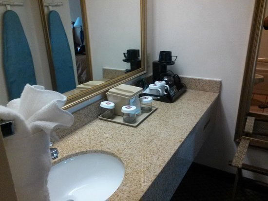 Clarion Inn Columbia-Airport: room
