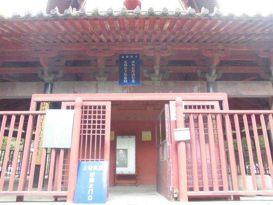 Tianfeng Pagoda: 塔の入り口(有料)