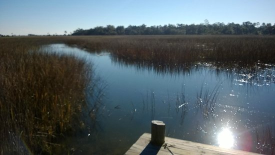 Blue Heron Inn: The Marsh