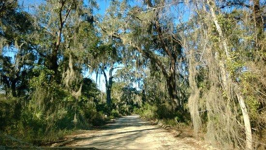 Driveway to Blue Heron Inn