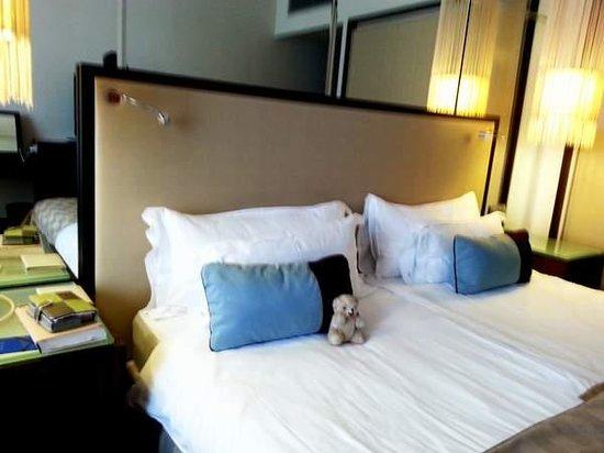Radisson Blu Alcron Hotel, Prague : Il nous suit partout...