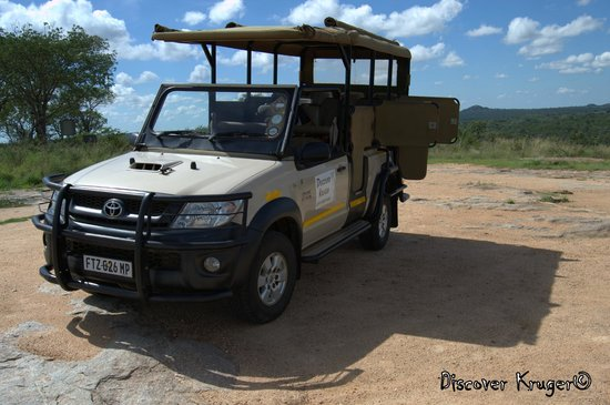 Discover Kruger Safaris: Your Open Vehicle Experience