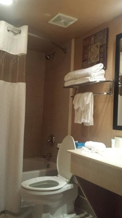 Champions World Resort: Bathroom room 116