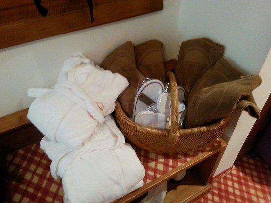 Hotel Lanerhof: Kit spa