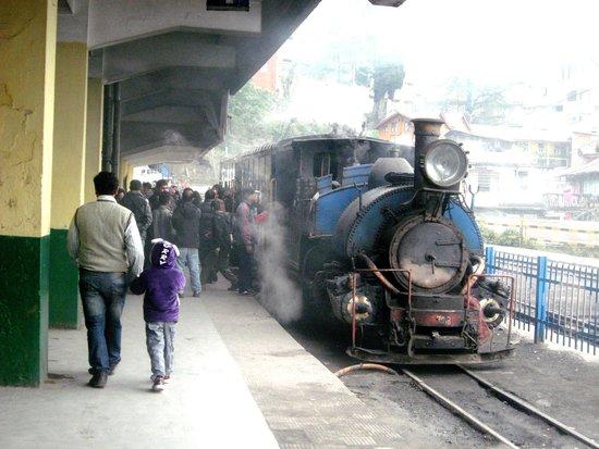Darjeeling Himalayan Railway: Joy Ride