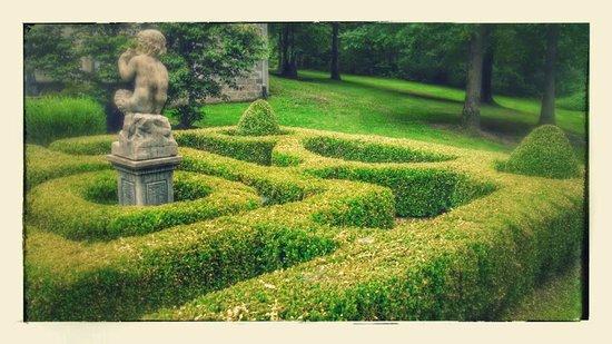 Ravenwood Castle: beautiful maze topiary in the garden