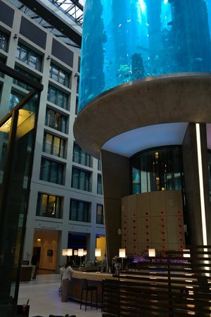Radisson Blu Hotel, Berlin : Lobby in the evening