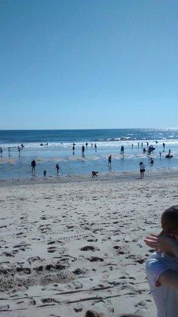 Marconi Beach: Marconi a marée basse