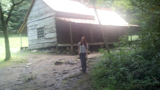 Noah Bud Ogle Cabin: Chelsea Ogle cabin Tenn.