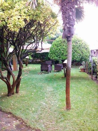 Hotel San Carlo : giardino esterno