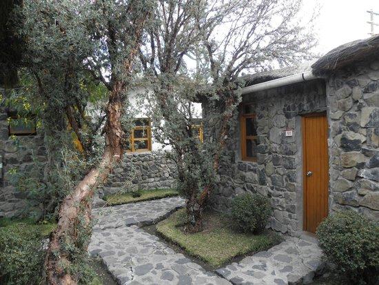 Casa Andina Standard Colca: Área circundante
