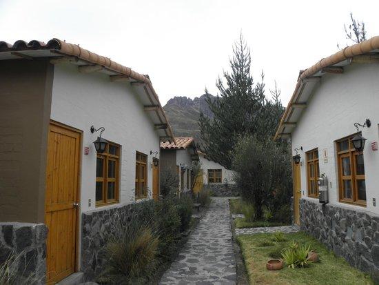 Casa Andina Standard Colca: Quartos