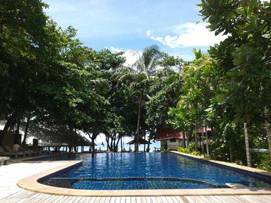 Palita Lodge: swimming pool