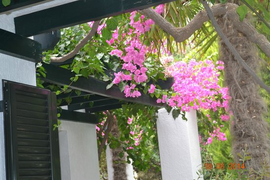 Anna Maria Village: Плетеная крыша веранды