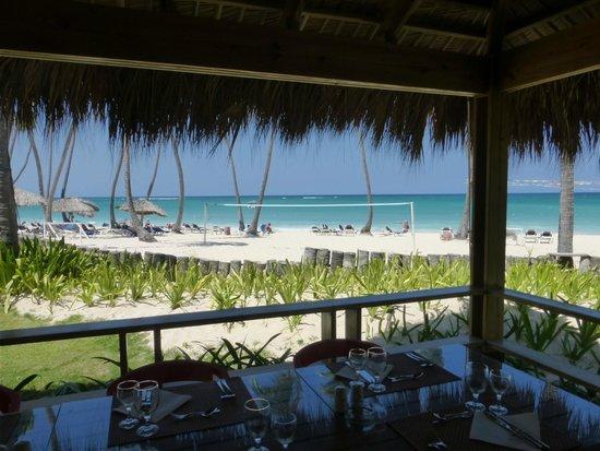 Grand Palladium Punta Cana Resort & Spa : comedor