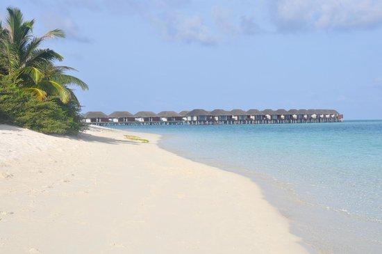 Velassaru Maldives: 4