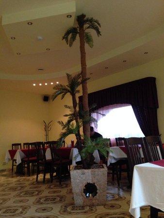 Ulenurme, Estonia: That palm tree